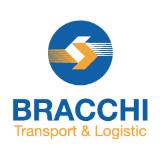 Bracchi